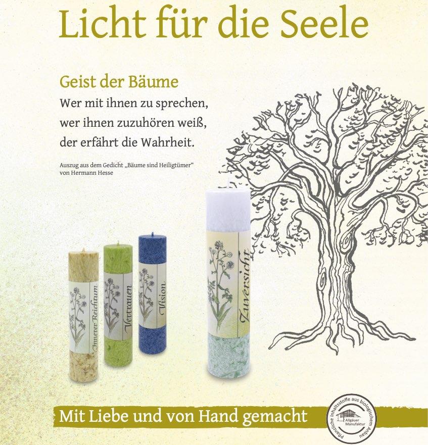 Allgäuer Heilkräuter Kerzen - Set: Geist der Bäume